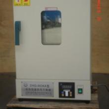 供应电热鼓风干燥箱,操作简单方便批发
