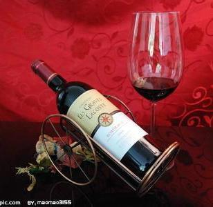 莫里诺干红葡萄酒图片