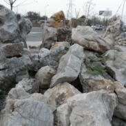 哪里假山石最好图片