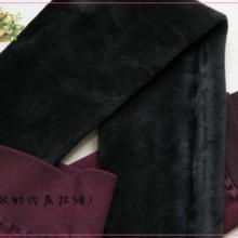 供应冬季保暖打底裤,冬季保暖打底裤批发,冬季保暖打底裤厂家