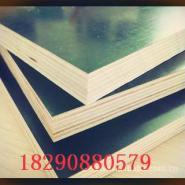 乌鲁木齐木模板施工电话图片