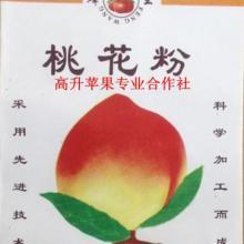 供应中农金辉桃苗/金富1苹果/6月份水密桃/苗餔水果基地/华艳苹果