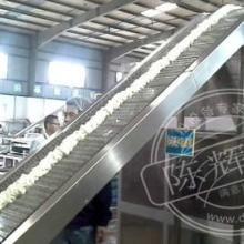 供应陈辉球半干粉设备米粉加工设备大产能创造高利润
