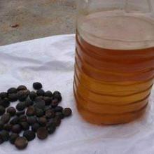 供应山茶油