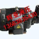 供应新郑3HP-VP20油泵电机组,新郑低压叶片泵电机组批发