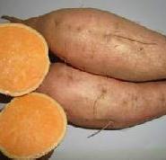 济薯26图片