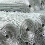 供应电焊钢丝网