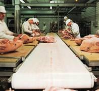 供应食品机械的专用皮带