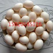 丹东市出售鸽子蛋2000枚图片