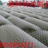 供应磨料丝抛光刷,安徽磨料丝抛光刷,磨料丝抛光刷价格多少
