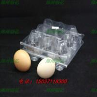 供应10枚鸡蛋托/12枚鸡蛋托/鸡蛋盒/郑州吸塑托盒/郑州塑料蛋托
