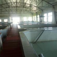 供应青岛莱阳海水制冷机海水制冷机的应用
