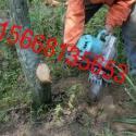 供应带土球起苗机安全快速高效带土球