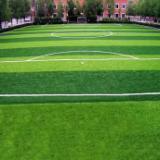 供应人造草足球场单丝人造草皮