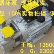 元新YS-20A高温马达图片