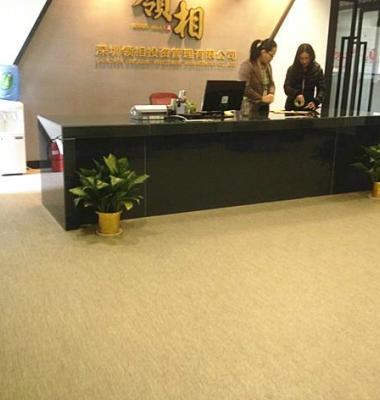 办公室用地板图片/办公室用地板样板图 (3)