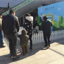 供应重庆低价租羊驼苏州低价租羊驼租羊驼全国低价租羊驼北京低价租羊驼南批发