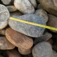 灵寿3-5cm公园鹅卵石用途图片