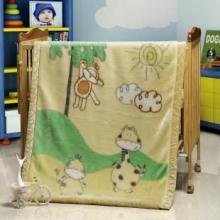 供应拉舍尔儿童毛毯库存特价库存直通车免费提供信息批发