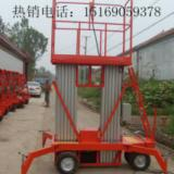 供应双柱铝合金升降机 家用升降机