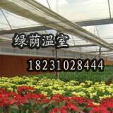 供应银川花卉温室_温室价格_温室厂家_温室改造 银川花卉温室大棚