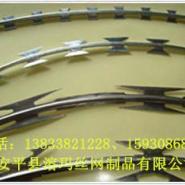 娄底庄稼圈单根的BTO22刀片刺绳图片