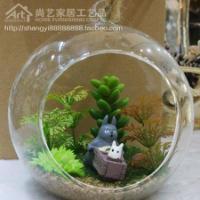 最新时尚仿真多肉植物玻璃微景观