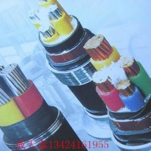 成天泰电缆VV系列图片