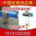 河北省1吨6米电动葫芦钢丝绳葫芦图片
