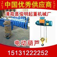 供应5吨6米电动葫芦钢丝绳升降起重机钢丝绳电动葫芦具有重量轻、体积小、结构紧凑、品种规格多、运行平稳等优点图片