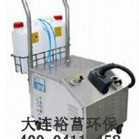 大连供应蒸汽清洗机