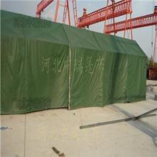 供应帐篷各种规格野营帐篷