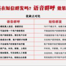 供应南京语音群呼系统