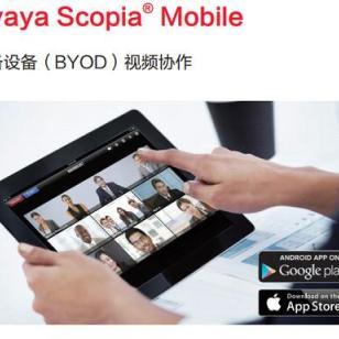 AVAYA高清视频终端_Scopia_Mobile图片