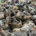 哪里的太湖石最便宜最好图片