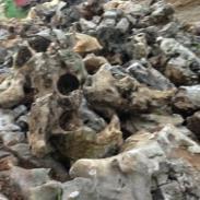 江苏苏州哪里有精品太湖石厂家图片