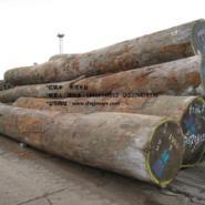 一手原木货源非洲红铁木图片