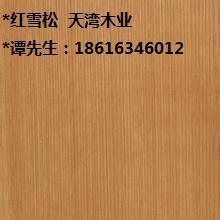 红雪松图片/红雪松样板图 (4)
