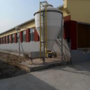 猪场自动供料_猪场自动化供料系统图片