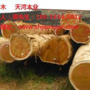杭州巴蒂木花架图片