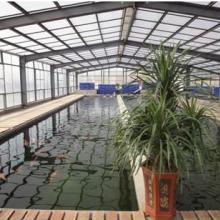供应用于淡水养殖项目|养殖项目合作|淡水养殖技术的淡水养殖项目合作提供淡水养殖技术批发