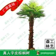 仿真棕榈树·人字皮·室内 SL-ZL-10图片