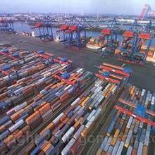 上海木材进口代理报关图片
