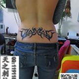 供应腰花纹身骷髅纹身半甲纹身青岛纹身
