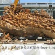 上海树根雕搬运搬场装卸图片