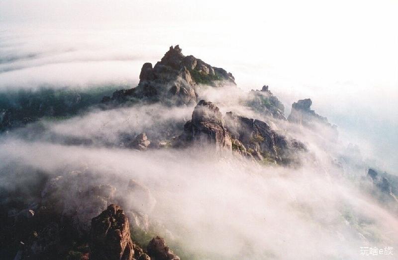 青岛有品质的青岛旅游服务公司青岛旅游葱