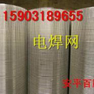 铁丝钢丝焊接网/建筑保温镀锌网图片