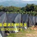 供应遮阳网防晒网.厂家定做各种尺寸遮阳网,晾晒网