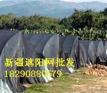 供应遮阳网防晒网.厂家定做各种尺寸遮阳网,晾晒网批发