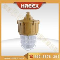 防爆节能HID灯 供应防爆节能HID灯价格 防爆节能HID灯厂家